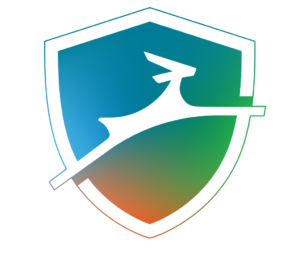 Dashlane Review 2019 Is Dashlane Safe and Secure to use